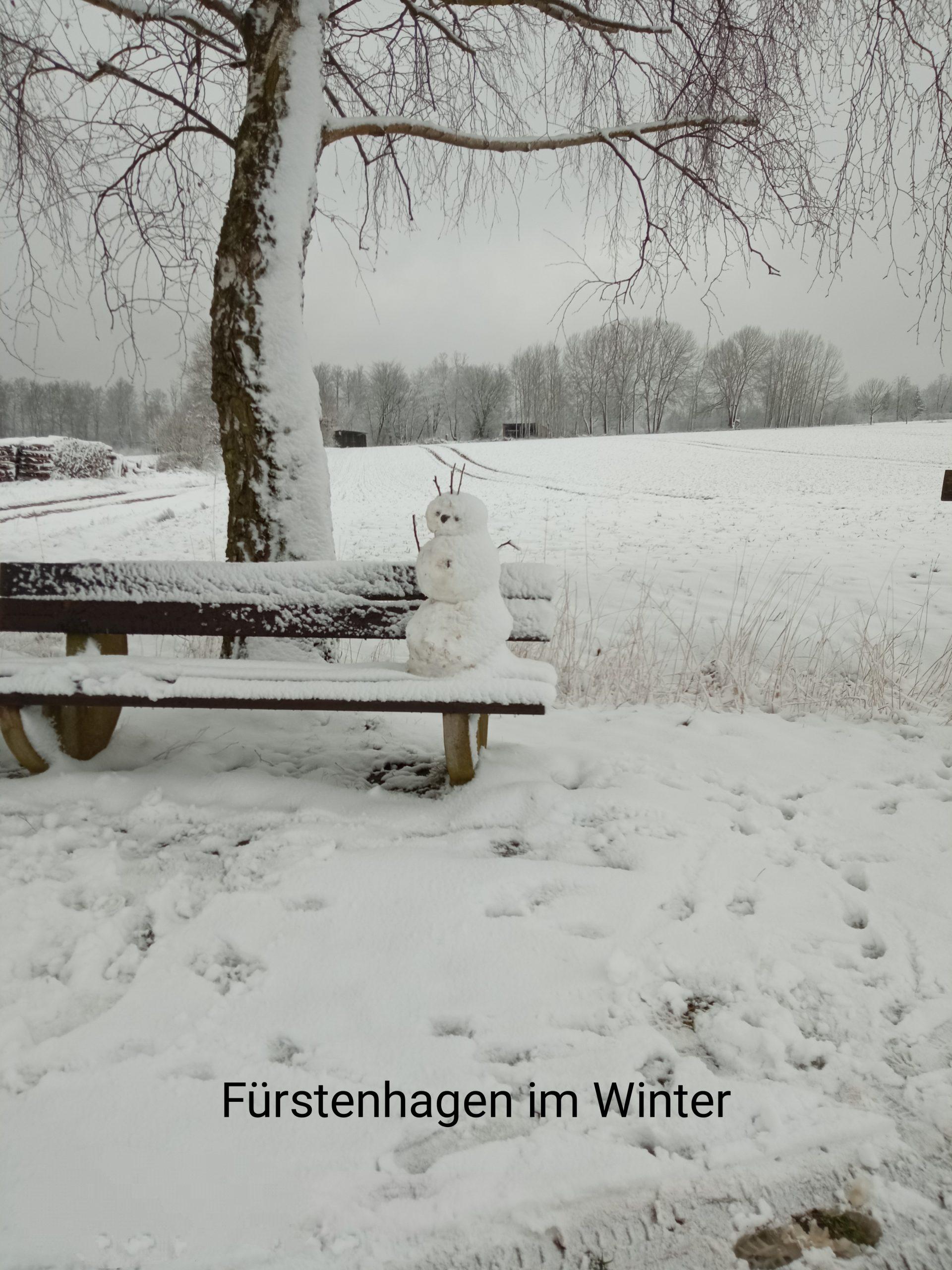 2. Platz Fürstenhagen im Winter
