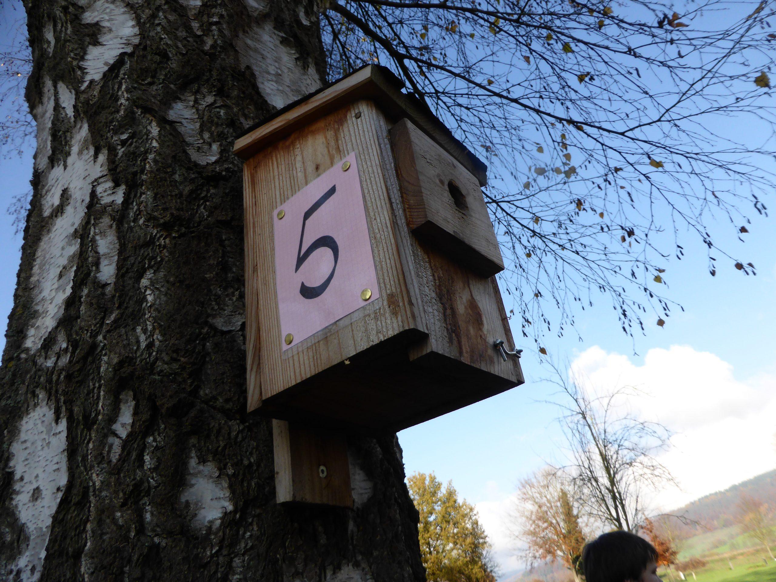 2019 die Vogelhäuschen werden nummeriert